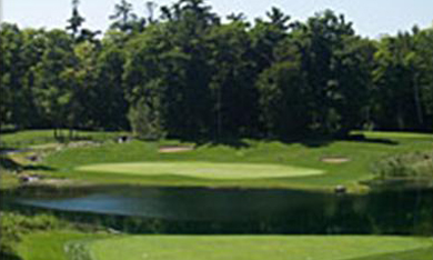 The Woods Michigan Golf